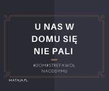 nie pal7