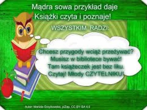 sowa1